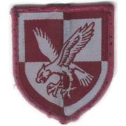 16th Air Assault Brigade