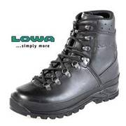 Lowa Gore-Tex Mountain Boots