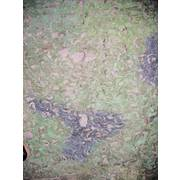 German Camo Net 10 x 10m